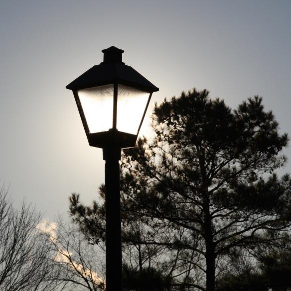 silhouette - lamp post